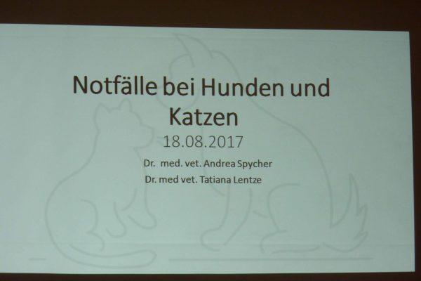 Tierarztpraxis_Baern_West_Vortrag1